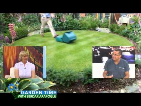 Garden Time ''Lawn Mediterranean''