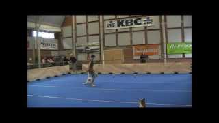 Havanese Jolie & Canine Freestyle (dog Dance)