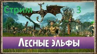 Total War Warhammer 2 - Лесные Эльфы - [3] - Пытаемся не подхватить сифилис от КОЗЛОЁБОВ