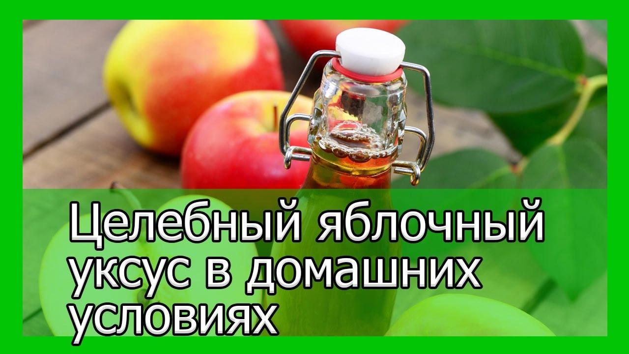 Яблочный уксус — Польза яблочного уксуса — Рецепт приготовления яблочного уксуса