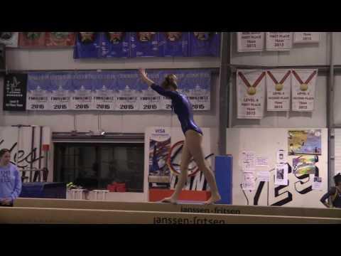 Gymnastics vs. Andover & North Andover 1-18-17