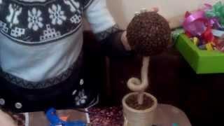 Как сделать топиарий Кофейное дерево(Как сделать топиарий
