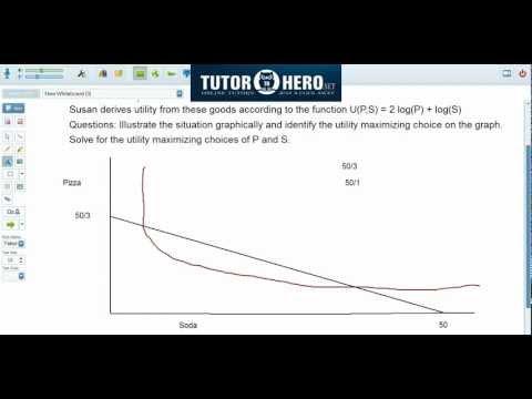 Online Economics Tutor - Consumer Optimization