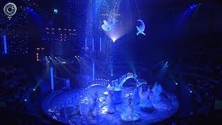 """В Новосибирском цирке представили новое грандиозное цирковое шоу """"Королевский цирк"""""""