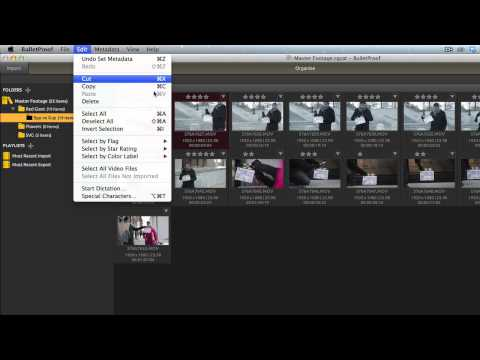 02 - Getting Started With BulletProof: Organize