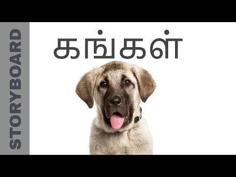 Kangal dog breed | Worlds most powerful dog | கங்கள்  நாய்| STORYBOARD | தமிழ்