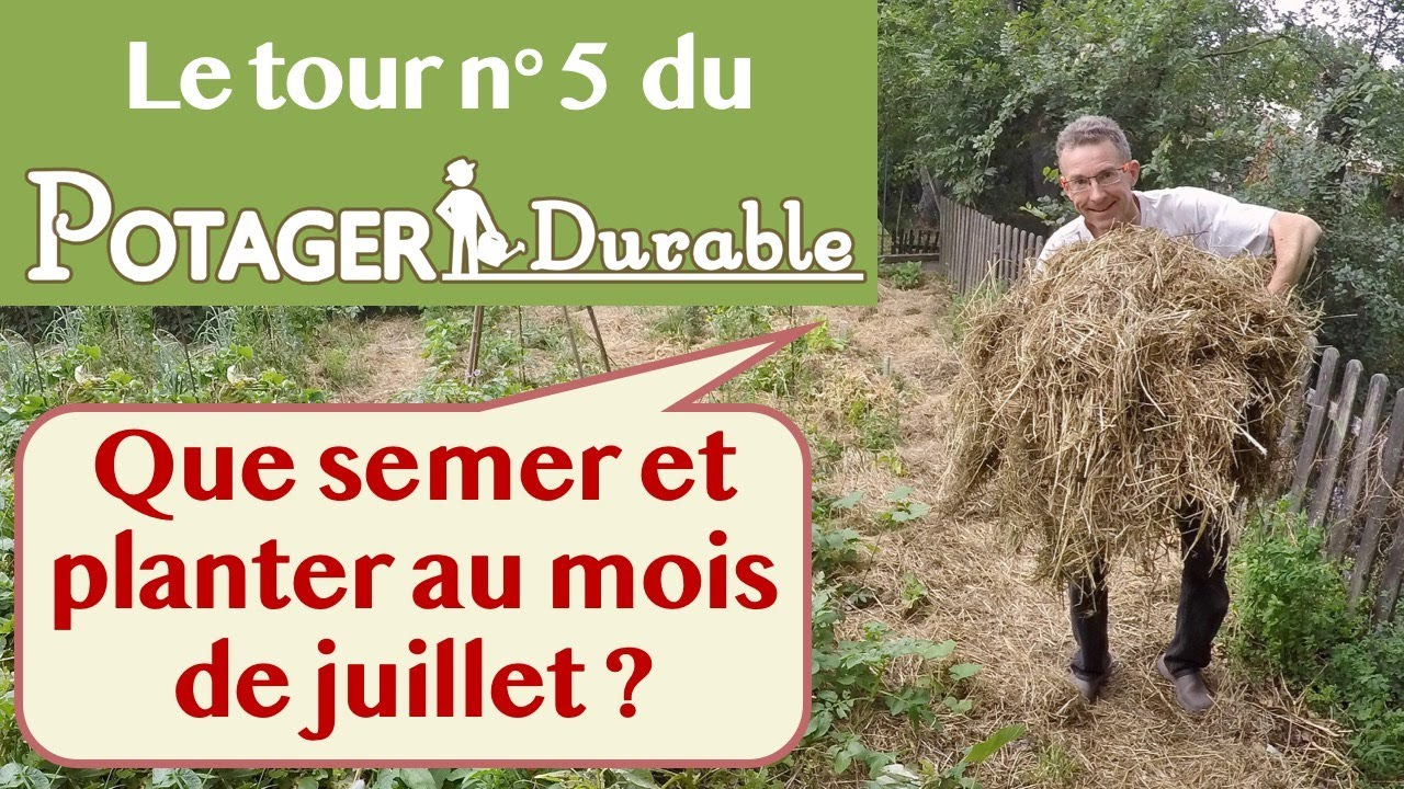 que semer et planter au mois de juillet au potager youtube. Black Bedroom Furniture Sets. Home Design Ideas