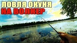 Ловля ОКУНЯ на волкер (уокер)   Ужгородский Стик   Атаки ЧАЕК!
