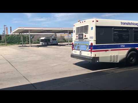 Chicago Transit Buses V4