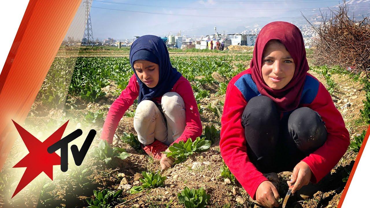 Einsatz gegen Kinderarbeit: Schulen für syrische Flüchtlingskinder im Libanon | stern TV