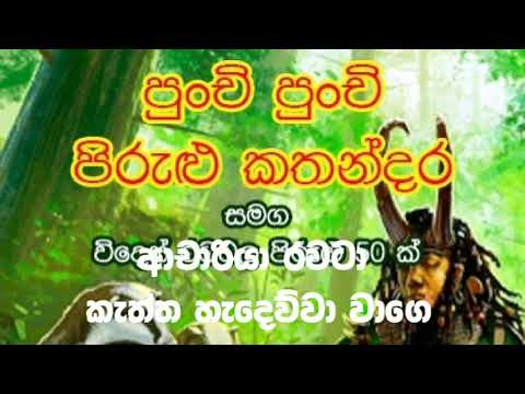 Sri Nimal Pirulu -  Achariya rawata