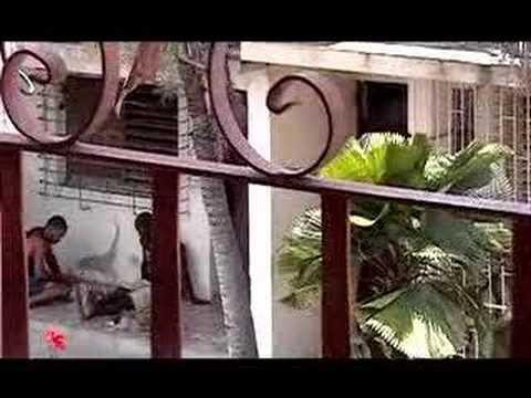 Cuba: A Secret in the Caribbean.