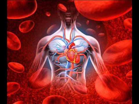 4 Hour Healing High Blood Pressure Binaural Beats Music With + Wind Sounds