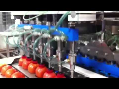 Vaccon Pick & Place -- Tomatoes in Food Processing Operation  - VDF  Variable Vacuum Pump (VDF100)