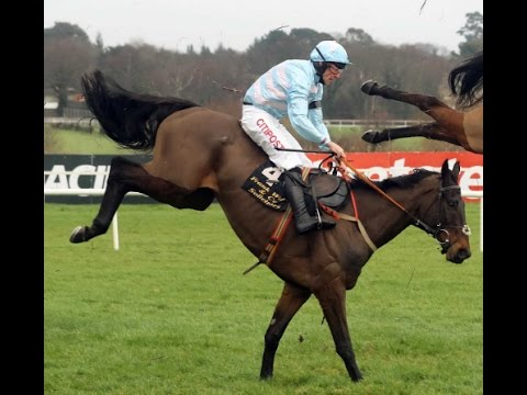 Some Plan - Leopardstown Group 1 Irish Arkle (29/01/2017) [All Horses Unscathed]