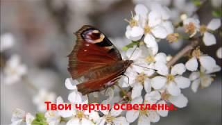 """Фонд """"Наши новые времена"""" представляет 8 марта в Штутгарте"""
