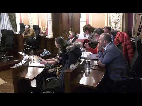 Pleno Ordinario Concello de Ourense - 06/03/2020