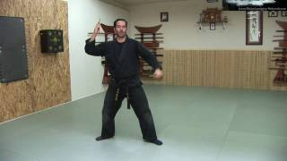 Bo Shuriken - Throwing Darts / Spikes - Ninja Training Free Video Blog - Ninja weapons(Ninjutsu (Bujinkan) BLACKBELT VIDEO COURSE: