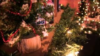 Opening Of Nativity Scene Exhibit - 2