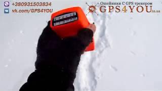 Поисковая система для норных   Terrier Finder Long Range Set от Deben