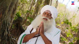 Naagini - ನಾಗಿಣಿ - Indian Kannada Story - EP 294 - Mar 30, '17 - #zeekannada TV Serial - Webisode