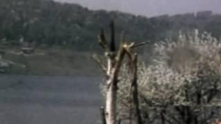 Video Vandalismus za socialismu (1986) download MP3, 3GP, MP4, WEBM, AVI, FLV April 2018