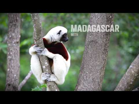 Madagascar with Rainbow Tours