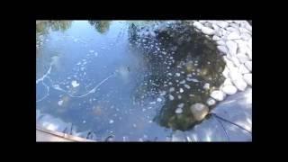 видео Аэраторы для пруда