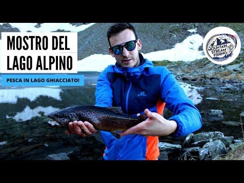 Il MOSTRO del lago alpino GHIACCIATO.