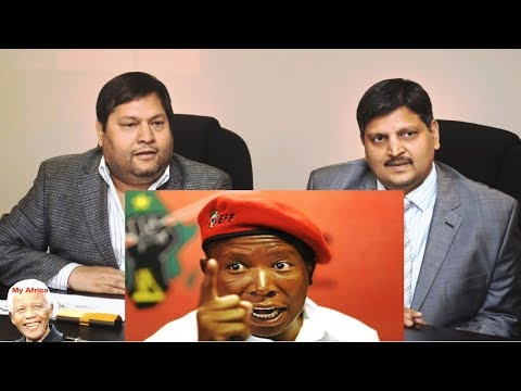 The EFF vs The Guptas. A Compilation Watch It All