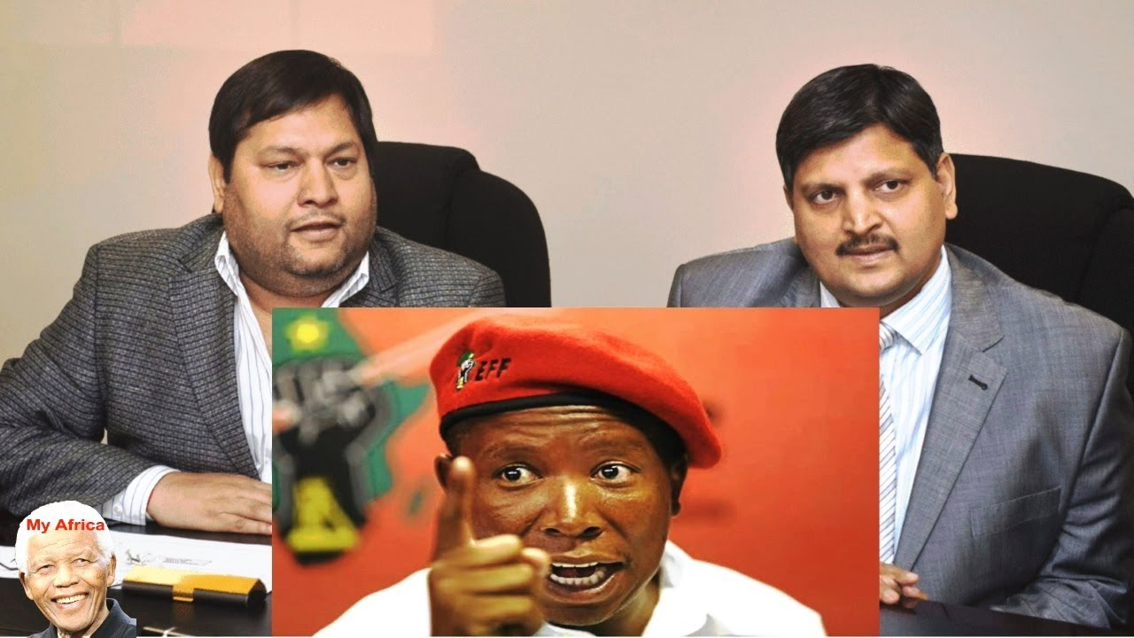 The EFF vs The Guptas. A Compilation Watch It All #1
