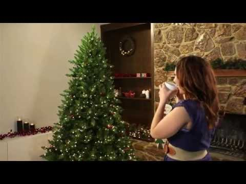 Fast Shape Christmas Trees