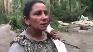 Украинские националисты разгромили лагерь цыган в Голосеевском парке.