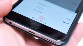 The New Money: Using Apple Pay in the Real World