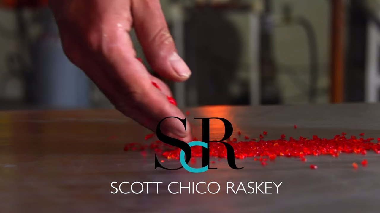 Scott Chico Raskey - Artist 2016