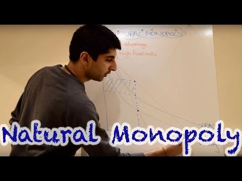Y2/IB 19) Natural Monopoly