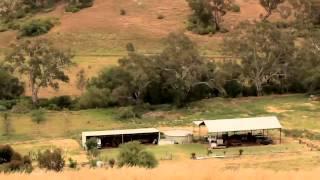 Bulldog Lane, Long Forrest - Professionals Ryder Real Estate Melton