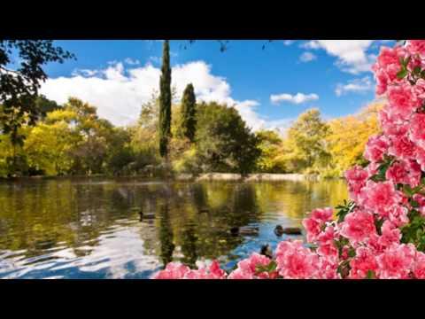 Les Feuilles Mortes - Andrea Bocelli