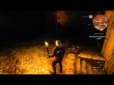 Witcher 3 Wild Hunt Find Triss Merigold House in the Bits in Novigrad