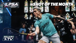 Squash: Men's Shot of the Month - March 2020