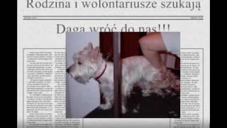 Odzyskana!!! Rumia - Skradziono Westa Dagę!