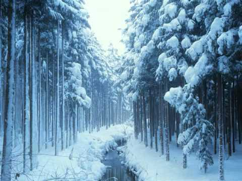 The Nutcracker Ballet (Tchaikovsky) - Act I: IX. Forest of Firs in Winter & X. Waltz of Snowflakes