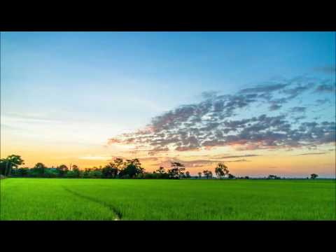 Nature Sounds HD - South India, Goa, Tropical Jungle, Two Hours, Soothing for massage