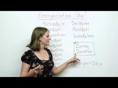 Pronunciation - DU - Education, Schedule, Individual, Procedure...