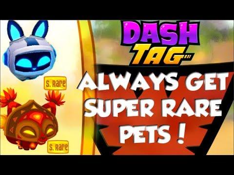 Tricks And Cheats To Get SUPER RARE PETS In Dash Tag Ll Dash Tag AJ