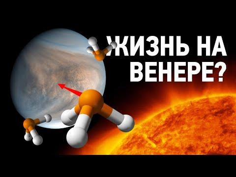 Учёные нашли жизнь на Венере?