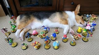 CORGI'S COMPLETE AMIIBO COLLECTION - Life After College: Ep. 413 thumbnail