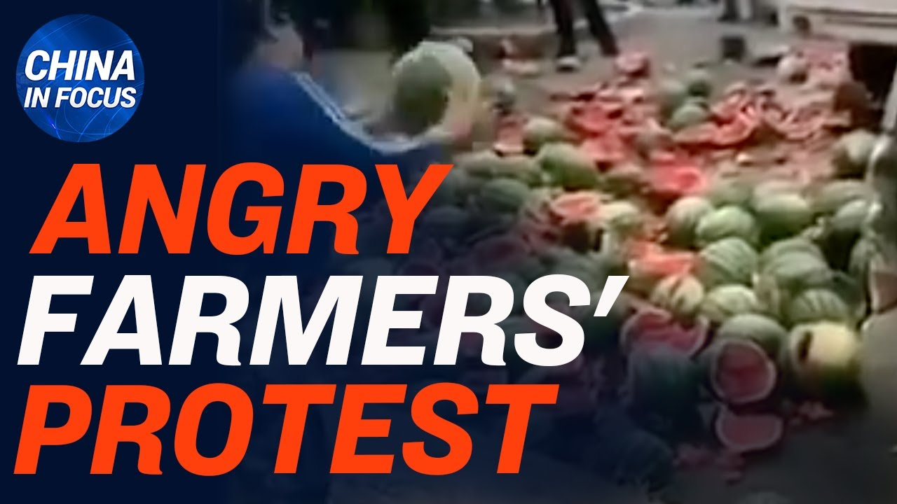 China farmers destroy melons to protest city management; Shred trucks seen at China consulate in NYC
