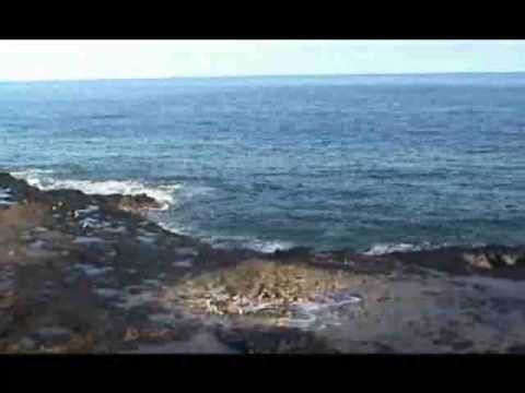 Hawaii Tourism Guide - Vacation Reviews, Resorts, Cruises, All Inclusive, Spas, Golf, Travel