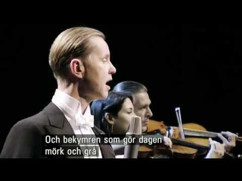 Max Raabe, Himmlische Musik...